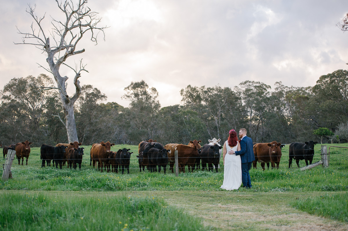 Jess+Luke-farm wedding-Elvi Design-89